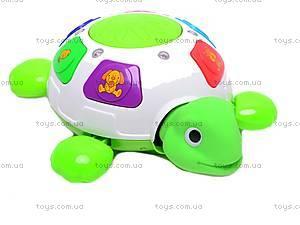 Черепаха музыкальная, ZY6600A