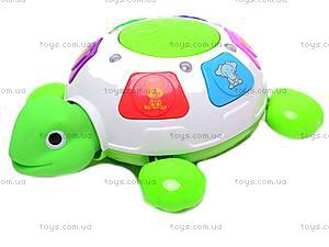 Черепаха музыкальная, ZY6600A, отзывы