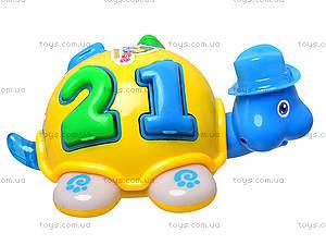 Черепаха музыкальная детская, 008, toys