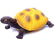 Черепаха с силиконовыми вставками, A008, купить