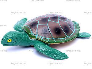 Черепаха с силиконовыми вставками, A008, магазин игрушек