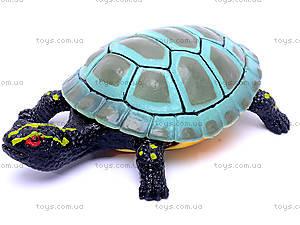 Черепаха с силиконовыми вставками, A008, toys