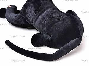 Черная пантера, S-ATA1123S, фото