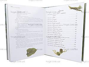 Детская книжка «Питер Пен», украинская, 2404, купить