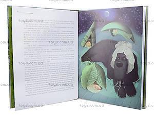 Детская книжка «Питер Пен», украинская, 2404, фото
