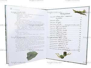 Детская книжка «Питер Пен», русская, 2398, купить