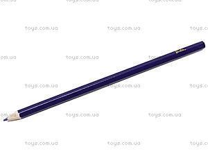 Цветные карандаши, 24 штуки, BRDLR-12S-1P-24, купить