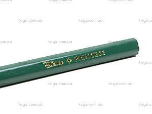 Цветные карандаши «Disney Prinsess», 12 штук, PRAB-US1-3P-12, фото