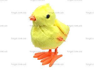 Цыпленок заводной, 869, фото