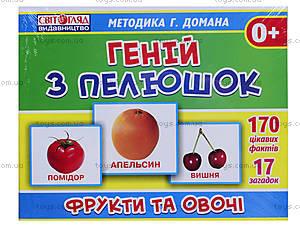Демонстрационные карточки «Гений с пеленок. Фрукты и овощи», 13107046У, купить