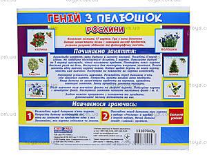 Демонстрационные карточки «Гений с пеленок. Растения», 13107042У, купить