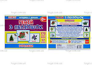 Демонстрационные карточки «Гений с пеленок. Растения», 13107042У