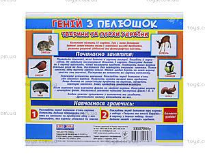 Демонстрационные карточки «Гений с пеленок. Животные и птицы Украины», 13107044У, фото