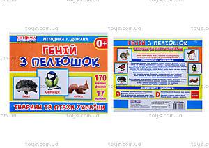 Демонстрационные карточки «Гений с пеленок. Животные и птицы Украины», 13107044У