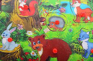 Деревянный вкладыш «Животные», BT-WT-0011, фото