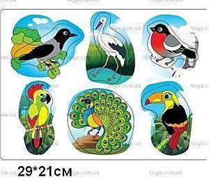 Деревянная игра-вкладыш «Птицы», 1132-BIRDS