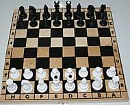 Деревянные шахматы для настольных игр, 172048, фото