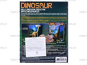 Детский набор «Скелет Брахиозавр. Раскопки», 03237, купить