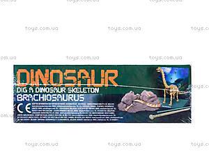 Детский набор «Скелет Брахиозавр. Раскопки», 03237, фото