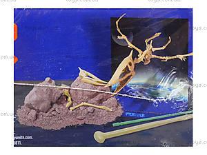 Детский набор «Скелет Птерозавр. Раскопки», 13238, фото