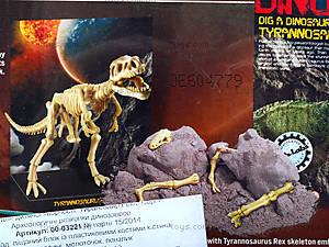 Детский набор «Скелет Тринозавр Рекс», 03221, фото