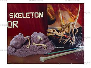 Детский набор «Скелет Велоцираптор. Раскопки», 13234, фото