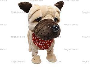 Детская игрушка «Собачка», CL1187ABC, купить