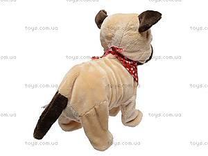 Детская игрушка «Собачка», CL1187ABC, отзывы