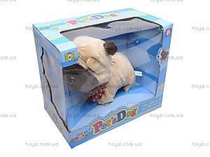 Детская игрушка «Собачка», CL1187ABC