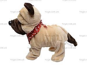 Детская игрушка «Собачка», CL1187ABC, детские игрушки