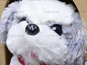 Детская игрушка «Собака», 9198C2, цена