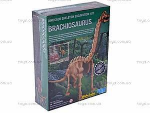 Детская лаборатория «Раскопки Брахиозавра», 03237, фото