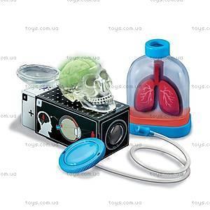 Детская лаборатория «Человеческие органы», 00-03374, фото