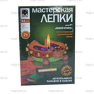 Детская мастерская лепки из глины «Живой огонек», 217021, купить