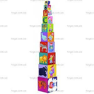 Детская пирамидка «Забавные кубики», DJ08503, купить