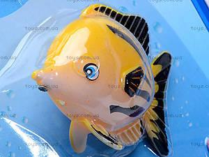 Детская рыбалка Fishing, BW30014-11/12, іграшки