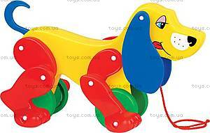 Детская игрушка-каталка «Боби», 5434