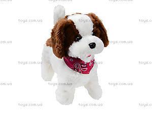 Детская игрушка на радиоуправлении «Собачка», 9698B4, отзывы