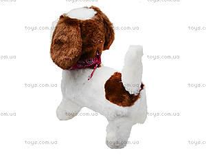 Детская игрушка на радиоуправлении «Собачка», 9698B4, цена