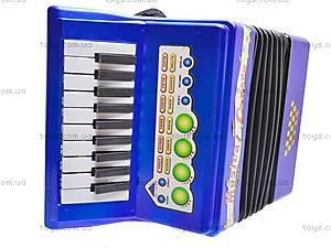 Детский аккордеон, 20233, купить