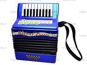 Детский аккордеон, 20233