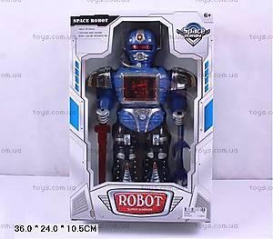 Детский космический робот, 200208