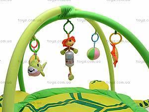 Детский коврик с погремушечками, 0228-1R, цена