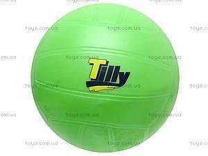 Детский мяч «Волейбол», W02-135