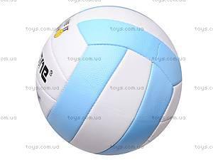 Детский волейбольный мяч PVC, BT-VB-0025, фото