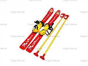 Детские лыжи с палками, 3350, магазин игрушек