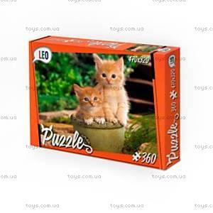 Детские пазлы «Котята», 360 элементов, 207-1, купить