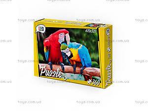Детские пазлы «Попугаи», 360 элементов, 207-12, купить