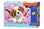 Пазл Castorland на 180 деталей «Щенок и розовые цветочки», В-018185, купить