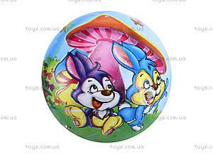 Детский мяч с рисунком, резиновый, BT-PB-0016, детские игрушки